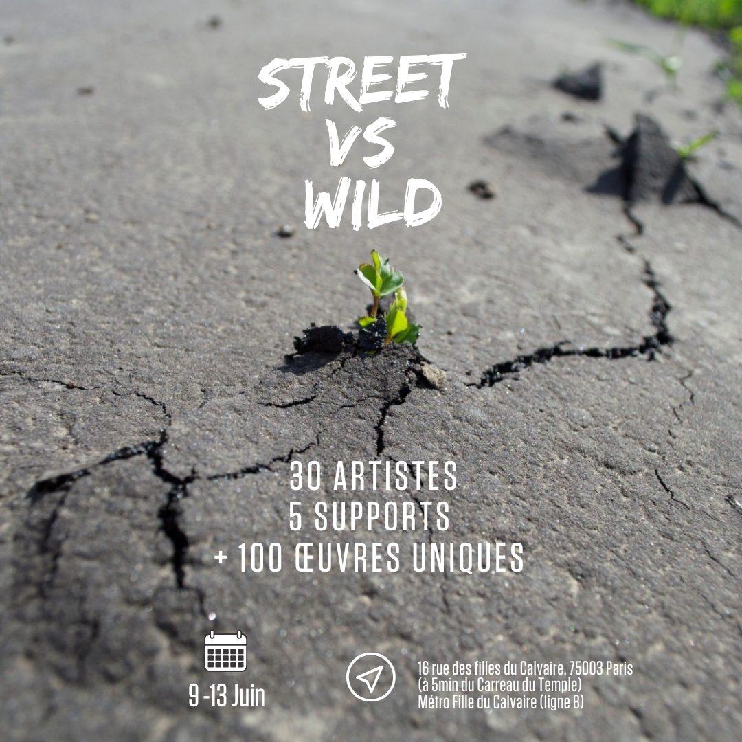 Affiche de l'exposition Street vs Wild